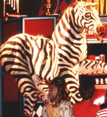 Zebra Julischka. Foto: Theater Arlequin Wien, Christine Rothstein